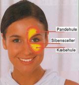 bihulebetændelse symptomer