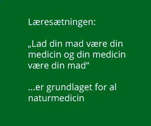 laeresaetning2.png